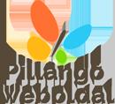 Pillangó Weboldal